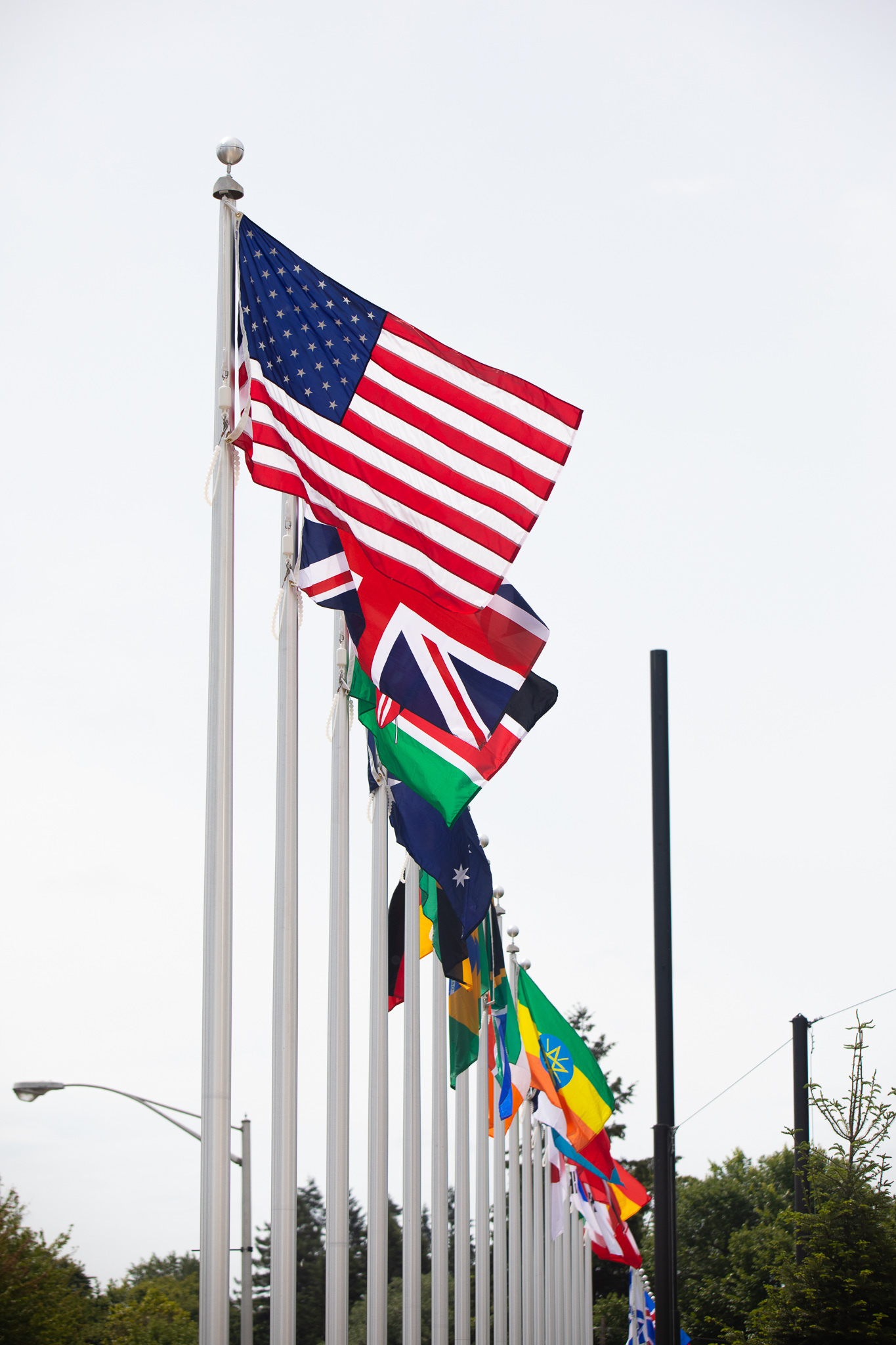 Hayward Field Flags